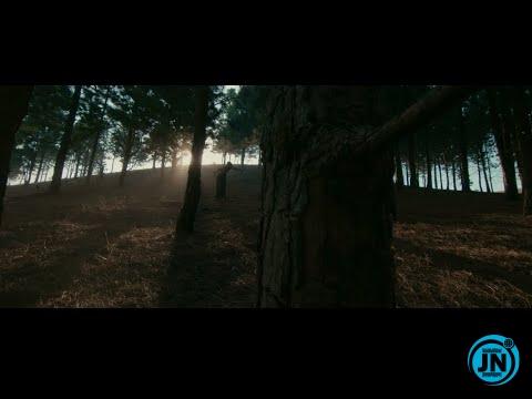 Fireboy DML - Champ ft. D Smoke